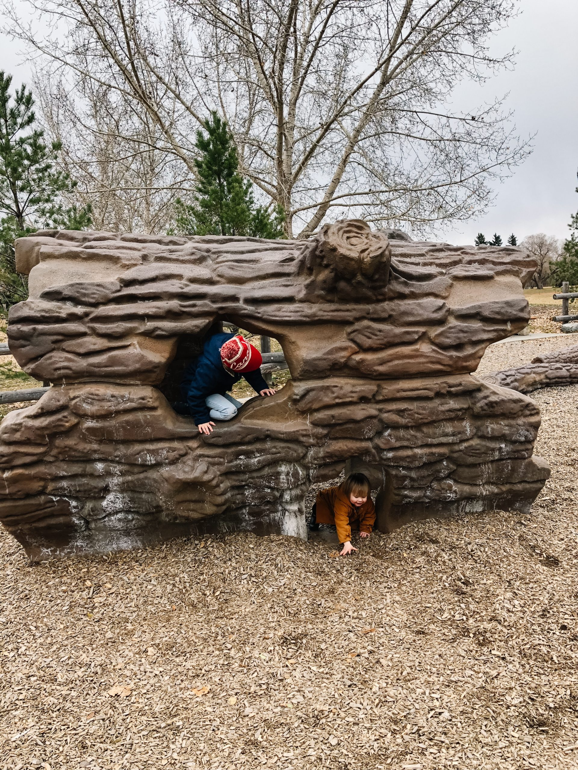 Two siblings play on a large tree trunk, one child has a confirmed ASD diagnosis