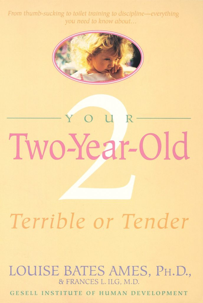Your 2 Year Old Book Cover